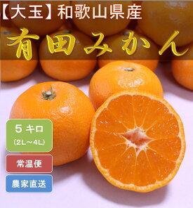 ZN6010_[大玉]和歌山県産 有田みか