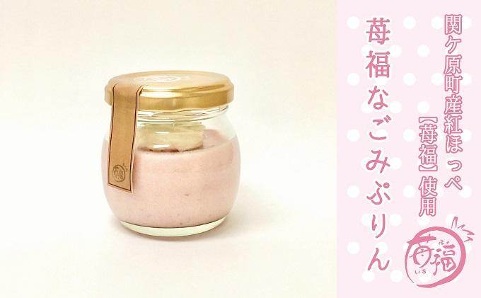 【関ケ原町産苺福使用】苺福なごみぷりん 5個セット