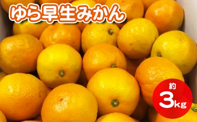 香川県産ゆら早生みかん 約3kg(傷み補充300g分含む)