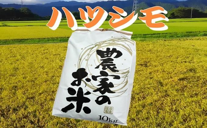 池田町農家 令和3年産特別栽培米ハツシモ 10kg×2 白米