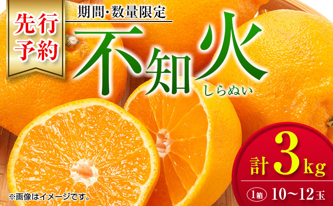 AA6-20 フルーツ≪先行予約≫不知火(