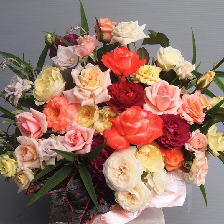 無農薬栽培バラ「香りのバラアレンジメント」(バラ風呂・バラジャム対応)[BN004ci]